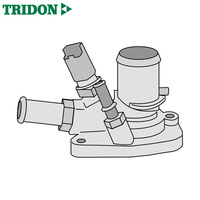 Tridon Thermostat TT1672-190