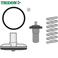 Tridon Thermostat TT1689-176