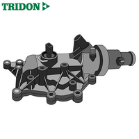 Tridon Thermostat TT1706-192