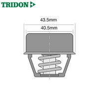 Tridon Thermostat TT237-170P