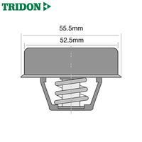 Tridon Thermostat TT238-160