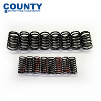 Austin Healey 100/4 Double Valve Spring Set 2660cc 1949-1956