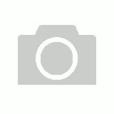 "Flat Top Piston Set +040"" FOR Holden Red Blue Black 6 Cyl 202 3.3 1971-1986"